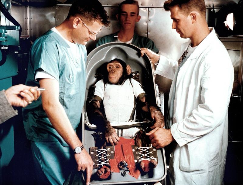 first monkey